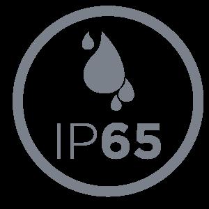 IP65_300x300px image